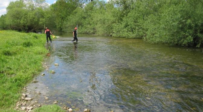 Diagnostic multi-agent pour les rivières comtoises