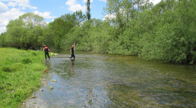 Surveillance de la qualité des eaux : bulletin du 1er semestre 2016 du réseau Quarstic