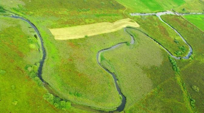 Le Drugeon entre Vaux et Bonnevaux labellisé «rivière en bon état»