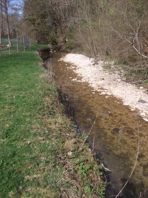 bonneille aval ruisseau de Vinchaud