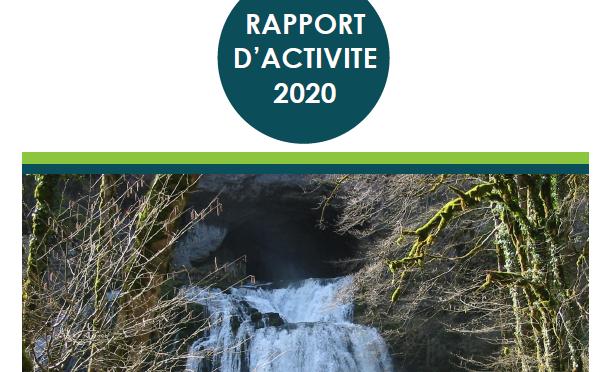 RAPPORT D'ACTIVITE 2020