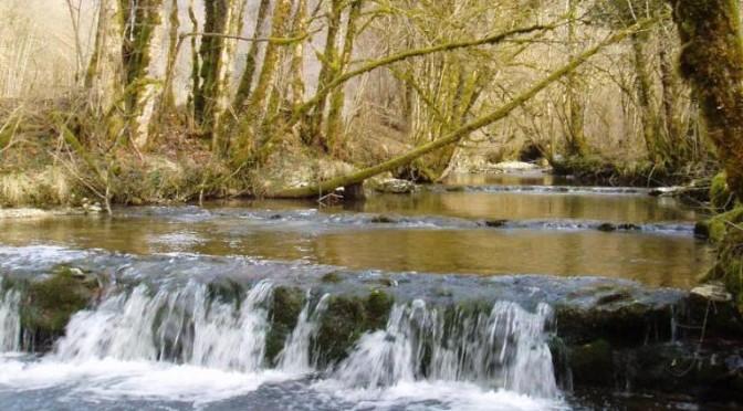 Diagnostic des affluents de la haute Loue