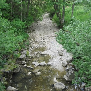 ruisseau_lavaux (5)